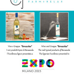 locandina vino grappa expo 2015